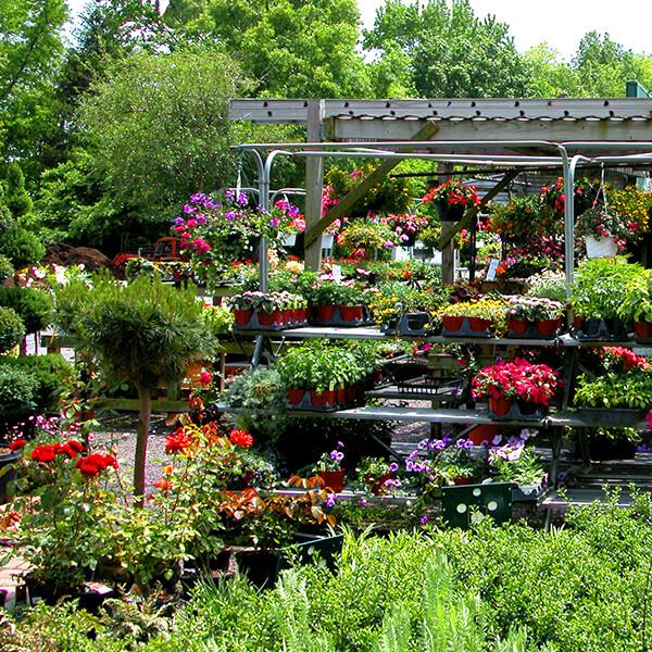 Spring Valley Mulch Plant and Garden Center Nursery Sales